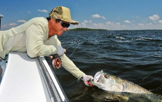The King - Silverking Tarpon