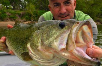 Costa Rica Fishing Tournaments