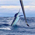 Mejores destinos de pesca
